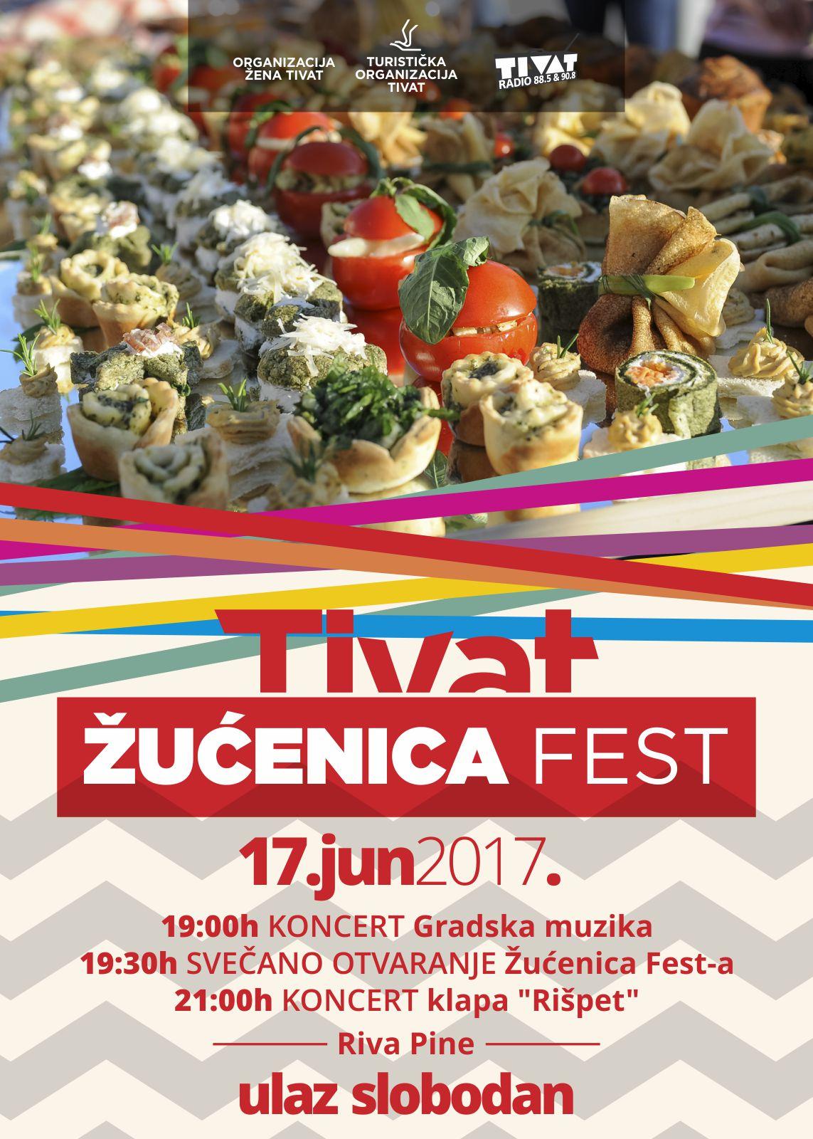 plakat ZUCENICA FEST