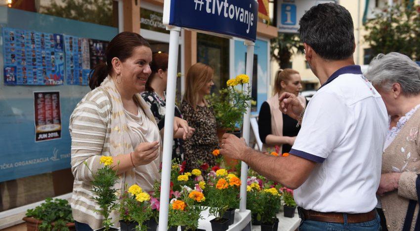 Cvijet za sugrađane -poklon TO Tivat