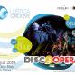 Luštica Groove ljetni muzički festival